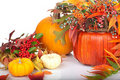 pumpkins-fall-beries-20738577